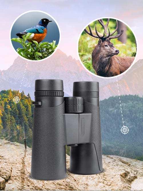 Starscope Binoculars Reviews